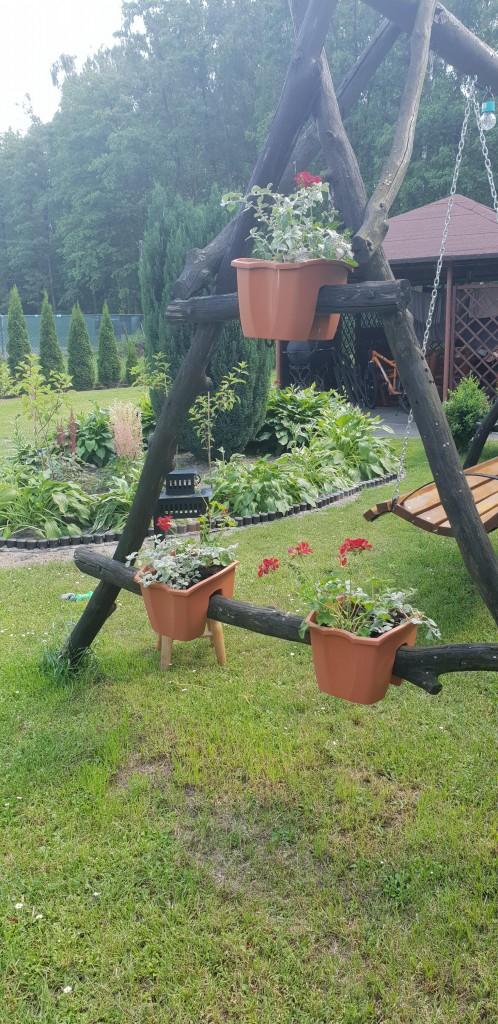 Rośliny, Ogród