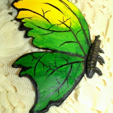 Motyle z masy solnej
