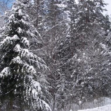 Zima na Podkarpaciu...