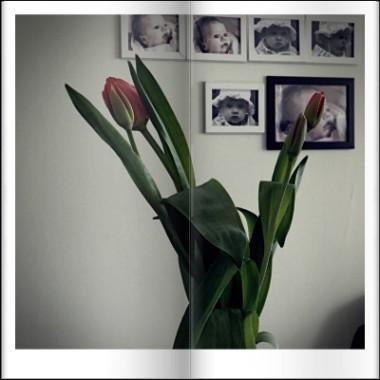 wiosenne różności oraz kwiaty urodzinowe od córki i męża