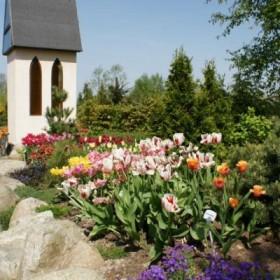 Ogrody marzeń - wiosna