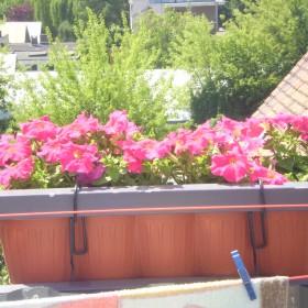 na moim balkonie