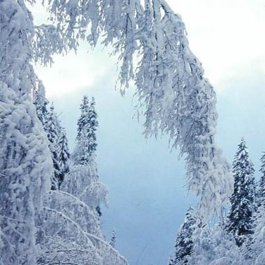 bajkowa zima