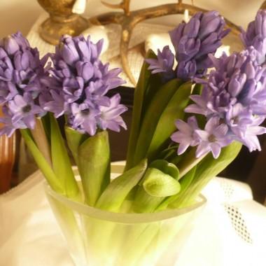 ...................i kolejne wiosenne kwiatki..............