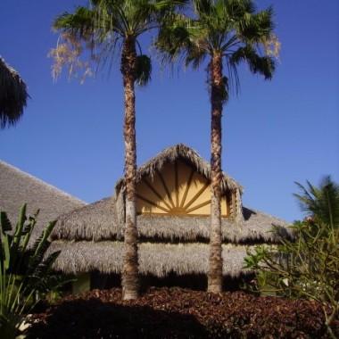 .....odpoczynek w ogrodzie egzotycznym....karaiby...dominikana