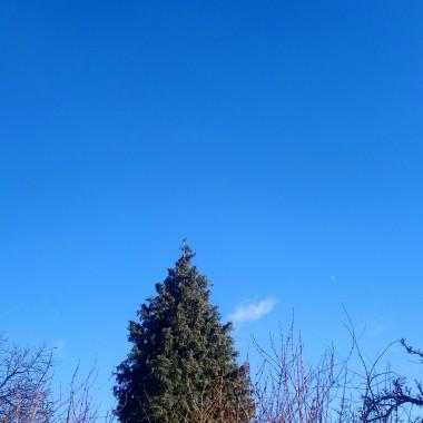 ...............i błękitne niebo...................