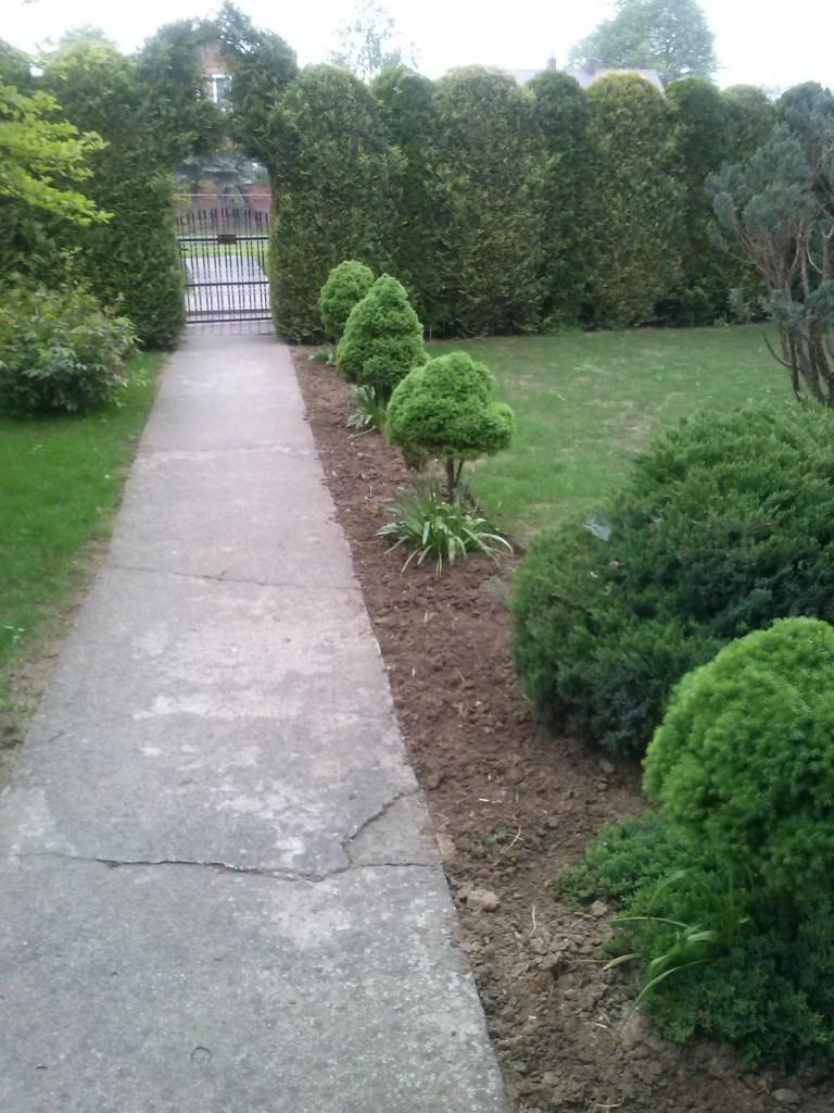 Pozostałe, Ogród moja pasja