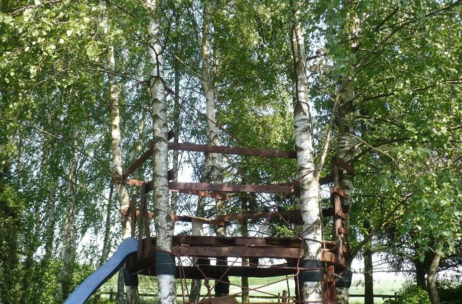 Pozostałe, Maj w moim lasku.................. - ..............i domek na drzewie dla Maluchów.............
