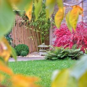 Idzie jesień - zaplanuj prace w ogrodzie