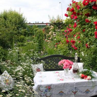 Wiecie jak kocham róże...w tym roku zakwitły pieknie...zapraszam więc do mojego różanego ogrodu.....