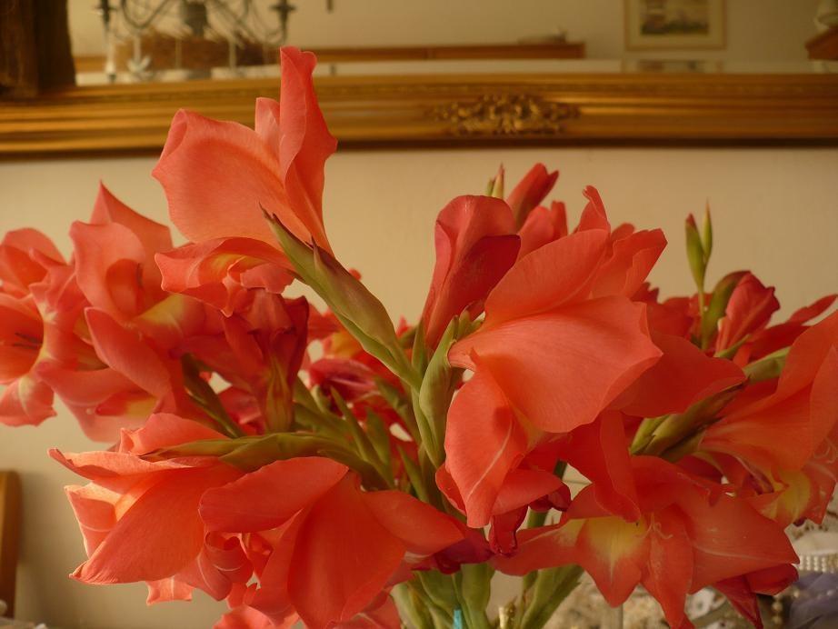 Pozostałe, Jak zmieniało się moje mieszkanie.................. - ..................kwiaty w wazonie.................