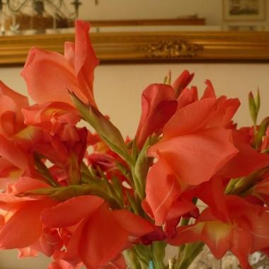 ..................kwiaty w wazonie.................