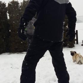 Bitwa śniegowa