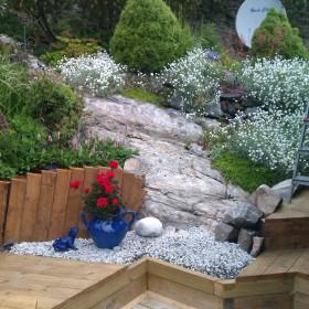 ogrod w czerwcu 2011