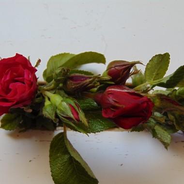 ............i wianuszek z róż...............