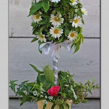 Kwiaty dla Miriam