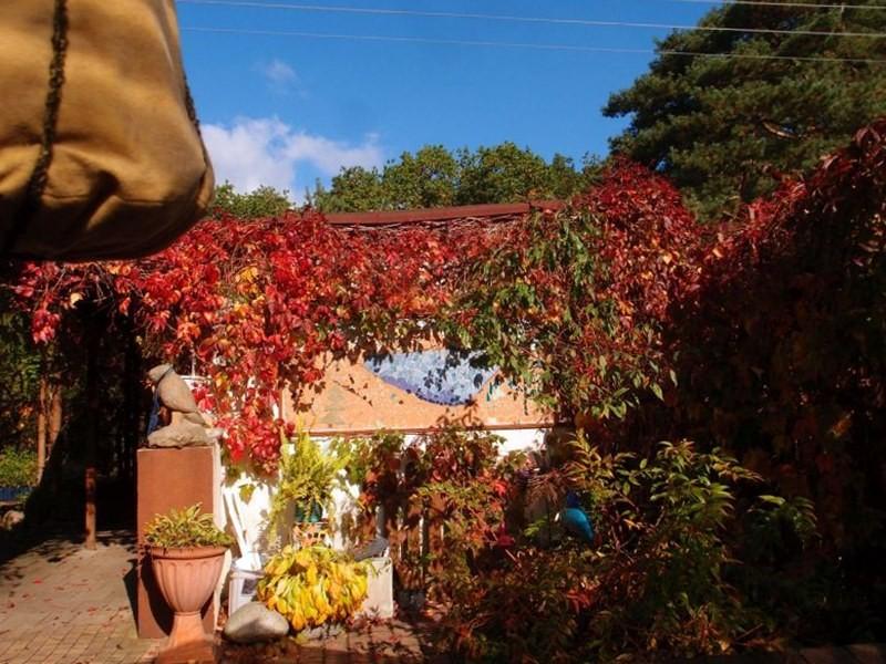 Ogród, Dojrzała jesień