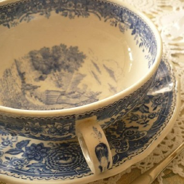 .............i niebieska porcelanka...............