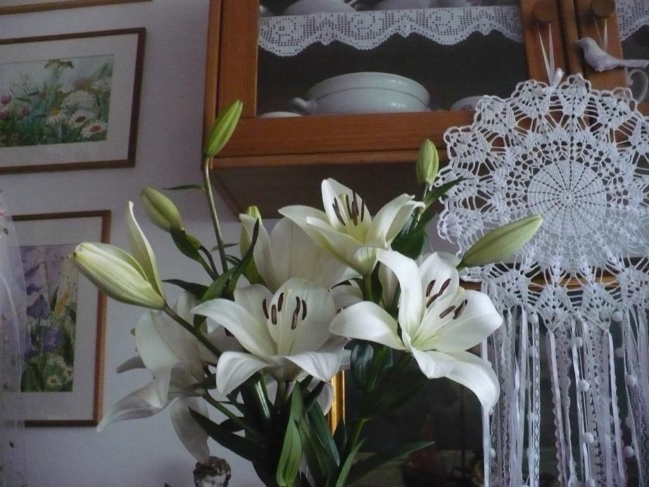 Pozostałe, Galeria jesienna.................październikowa............. - .............i lilie w domu..................