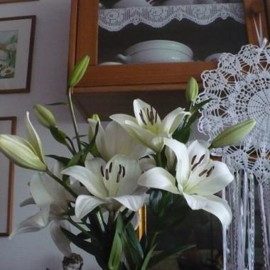.............i lilie w domu..................
