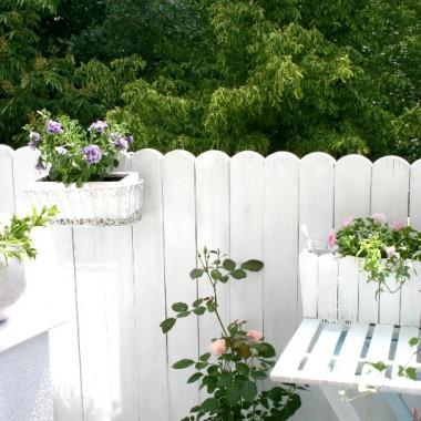 Witam Was serdecznie, dawno nie prezentowałam swojego malutkiego blokowego balkonu. Dwa lata temu zmontowałam przy pomocy męża wymarzony biały drewniany płotek, jako osłonę i wymieniłam podłogę na drewniane podesty. Wcześniej była na podłodze sztuczna trawa i wiklinowa mata po bokach. W tym roku odświeżyłam już płot, malując go ponownie na biało i na pomalowanie, też na biało, czeka jeszcze podłoga. Miłego oglądania!Pozdrawiamhttp://mylittlewhitehome.blogspot.com/