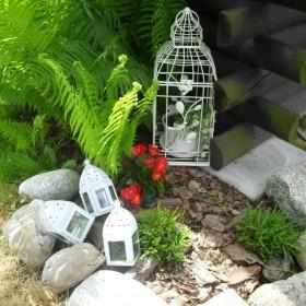 Wiosenny galop roślin w ogrodzie i coś nowego  do domku :)