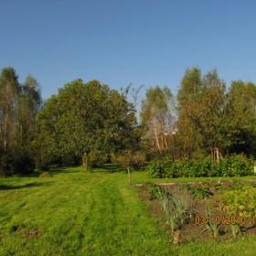jesień w ogrodzie...moim