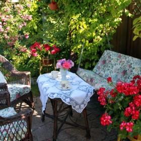 To co Magnolia robi w ogrodzie.....