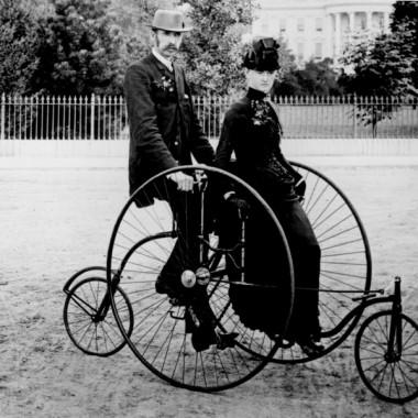 rower  udomowiony