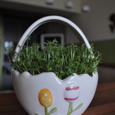 święta Wielkanocne w moim mieszkanku...