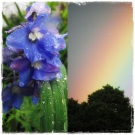 Czerwiec w strugach deszczu i barwach tęczy &#x3B;