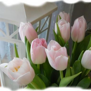 wiosna...ach to Ty..:-)