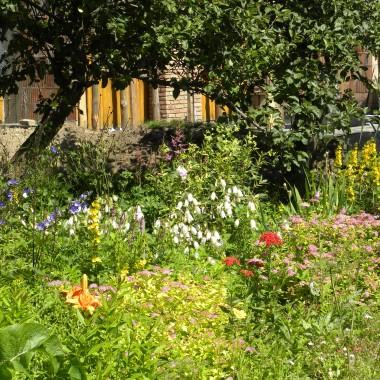 ogród powoli  zaczyna popadać w ruinę.....