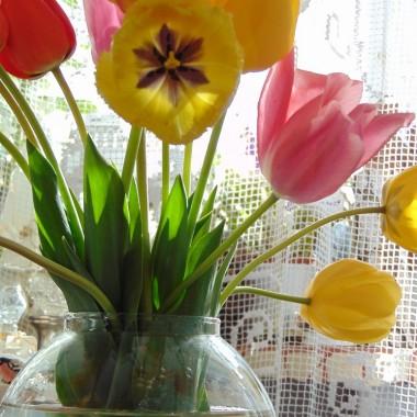 ..................i tulipany w wazonie................