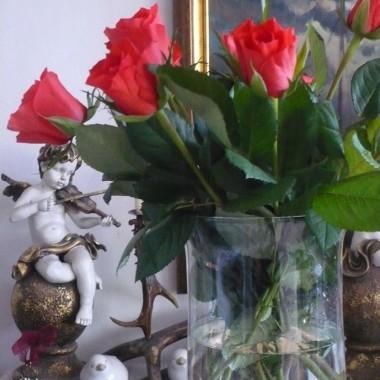 ................i róże w domu................