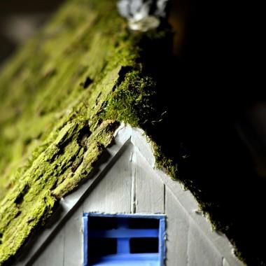Historia Pewnego Domu