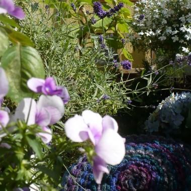 ..............i balkonowe kwiaty..............