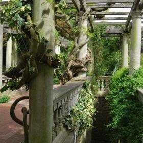 Pergola Park  Golders Green