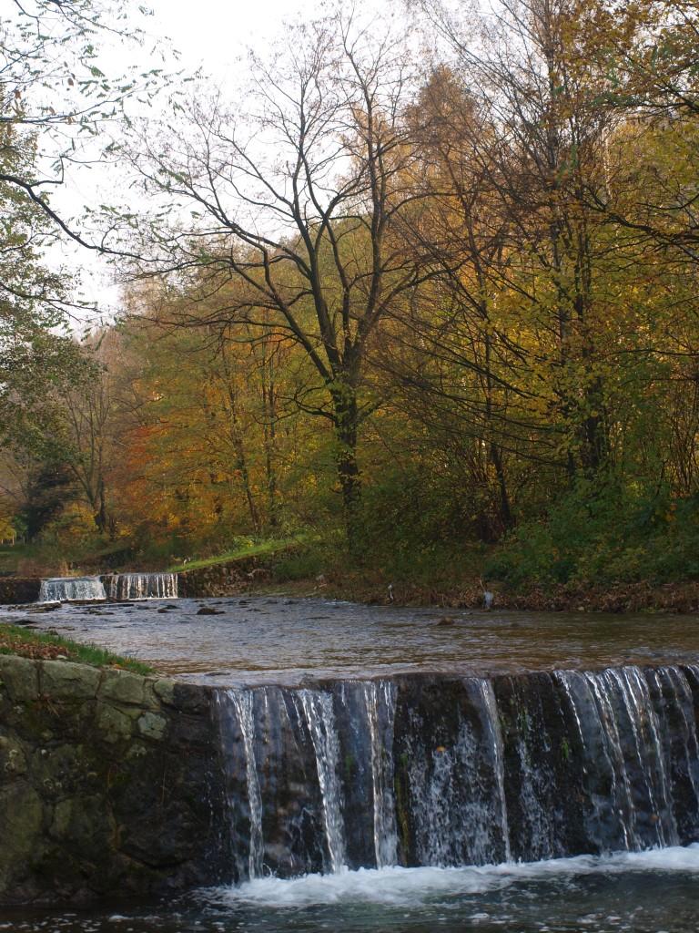 Leśne klimaty, W jesiennym nastroju