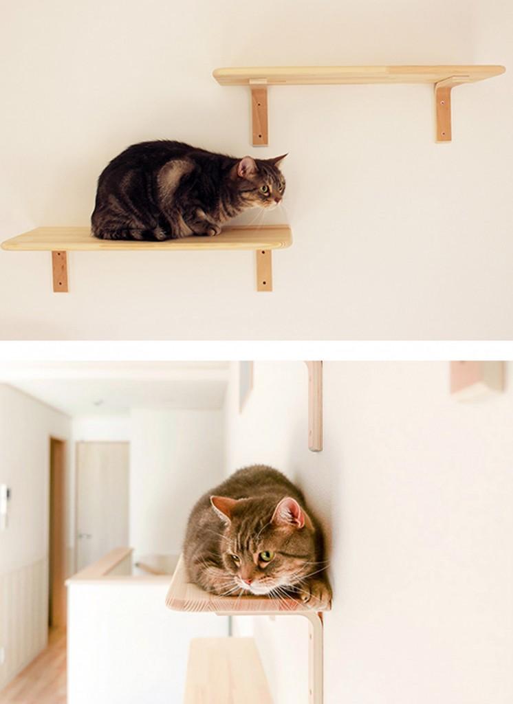 """Domy i mieszkania, Apartament dla miłośników kotów - Umieszczenie wysokich półek pod sufitem jest doskonałym sposobem na powiększenie """"terytorium"""" dostępnego kotów. Nie tylko będą służyć one jako punkt obserwacyjny, ale też kryjówka, bezpieczne miejsce, w którym będą mogły się skryć przed rękoma dzieci, kiedy zmęczą się zabawą z nimi.   fot. Wada Kosan / Felissimo/Ferrari Press/East News"""