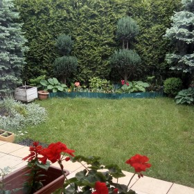 Póżna wiosna w ogródku i na balkonie