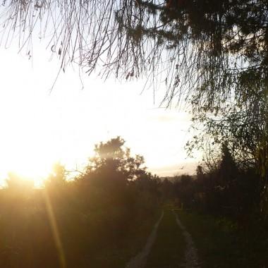 ...............i  droga pełna słońca..........