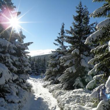 Jesienna wyprawa w zimowej scenerii
