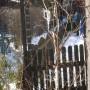 Balkon, Mroźny marzec -