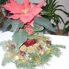 na Boże Narodzenie
