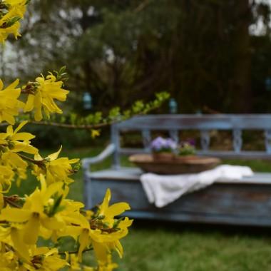 Lubię błękitne akcenty wśród monochromatycznych barw...A jeśli odnosi się to  do staroci- uwielbiam...Moja starociowa ławeczka ze skrzynią otrzymała właśnie nowy kolor...I miłość...Zapraszam na mojego bloga: www.wokolciebie.blogspot.com