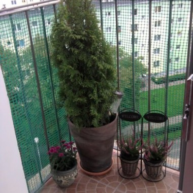 Co jesienią na balkon?