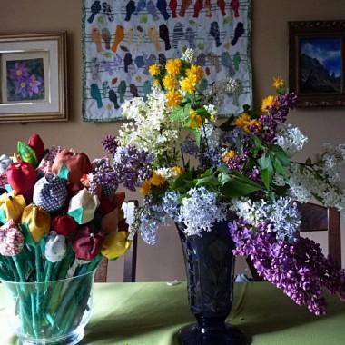 tulipany już przekwitły