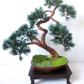 Sztuczne drzewko bonsai sosna w stylu han-kengai (półkaskada)