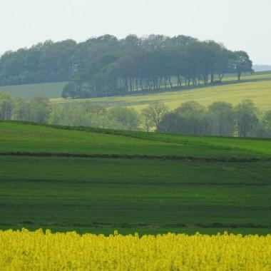 """Teraz jest ten czas kiedy pola są malowane rzepakiem ,zielenią...i błękitem niebaTaka mozaika...majowa...Zapraszam również do zakładki """"Podróże"""" do galerii """"SREBRNA GÓRA"""" a w niej krajobrazy wokół Twierdzy DONJON -największej górskiej twierdzy w Europie :)"""